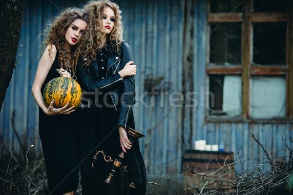 Kettő klasszikus nők pózol elhagyatott ház Stock fotó © tekso
