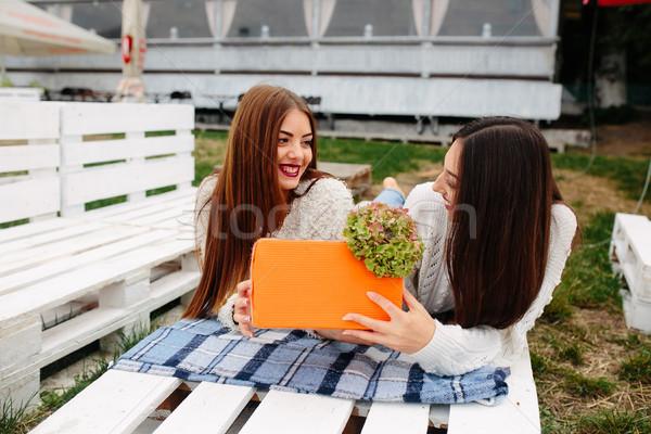 Lányok hazugság pad ad egyéb ajándékok Stock fotó © tekso