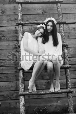 Two beautiful girl Stock photo © tekso