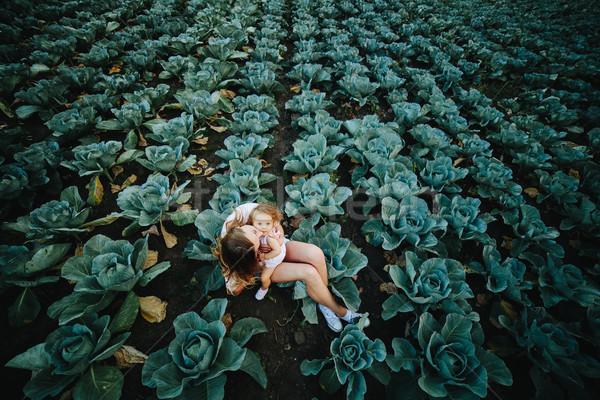 Mãe filha campo repolho mamãe Foto stock © tekso