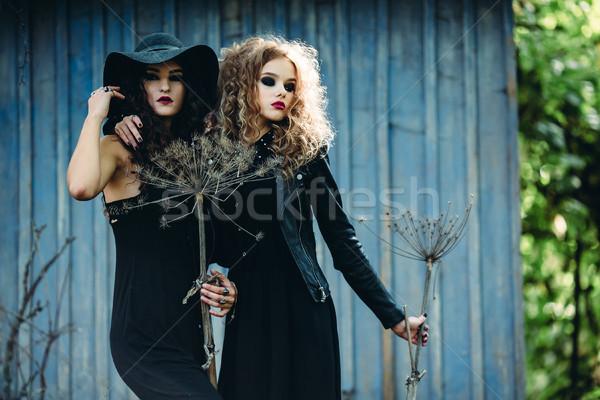 two vintage women as witches Stock photo © tekso