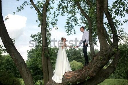 Foto d'archivio: Sposa · lo · sposo · albero · bella · Coppia · divertimento