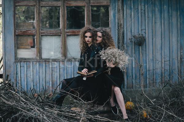 Twee vintage halloween vrouwen achtergrond pak Stockfoto © tekso