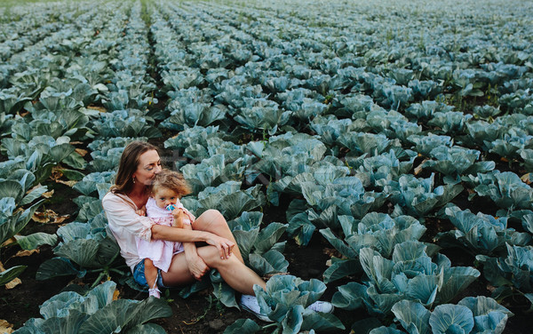 Mother and daughter on the field with cabbage Stock photo © tekso