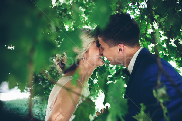 Beautiful wedding couple posing Stock photo © tekso