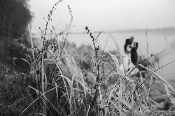 Wedding Coppia lago shore posa donna Foto d'archivio © tekso
