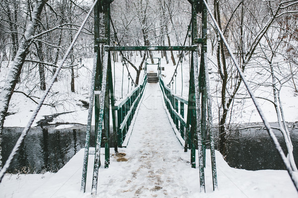 Brug park leidend rivier ijzer natuur Stockfoto © tekso