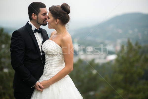 Wedding couple on nature Stock photo © tekso