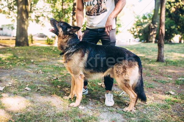 Hombre perro césped parque posando cámara Foto stock © tekso