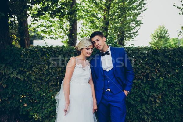 Güzel düğün çift poz park kamera Stok fotoğraf © tekso