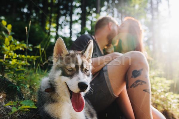 Mooie paar bos hond vrouw Stockfoto © tekso