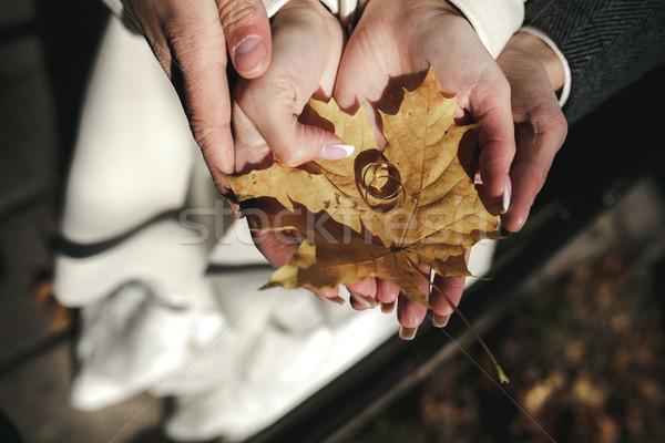 обручальными кольцами высушите листьев лист пару Сток-фото © tekso