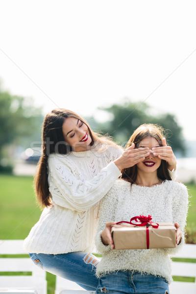 Twee mooie meisjes geschenk meisje ogen Stockfoto © tekso