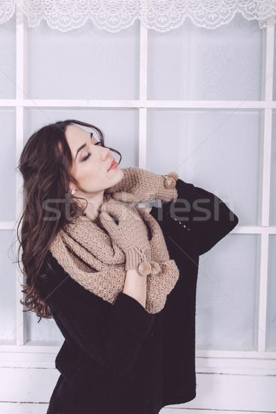 Aranyos lány tél pózol kamera karácsony Stock fotó © tekso