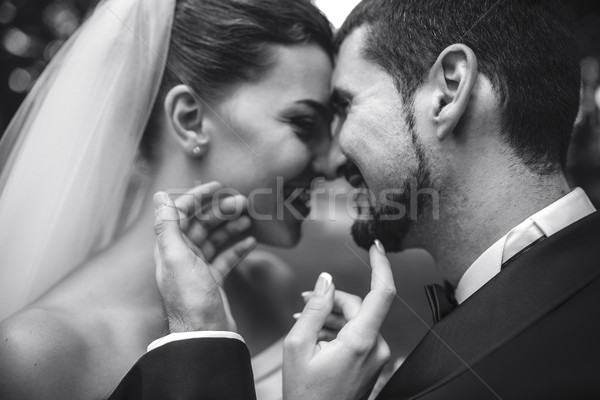 beautiful bride caress gently, the groom's face Stock photo © tekso