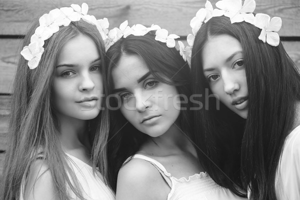 three beautiful girls Stock photo © tekso