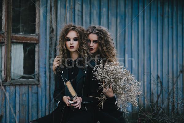 Twee vintage halloween achtergrond pak zwarte Stockfoto © tekso