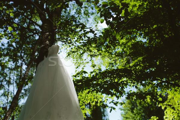 Esküvői ruha akasztás fa park fű divat Stock fotó © tekso