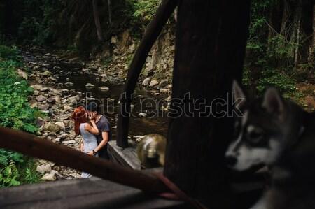 красивой пару вместе собака Swing Сток-фото © tekso