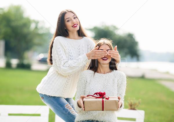 Dois belo meninas dom menina olhos Foto stock © tekso