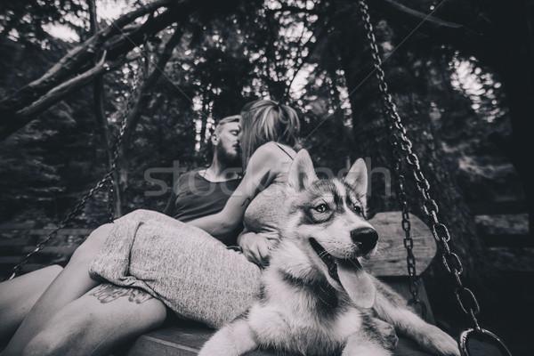 美しい カップル 一緒に 犬 スイング ストックフォト © tekso
