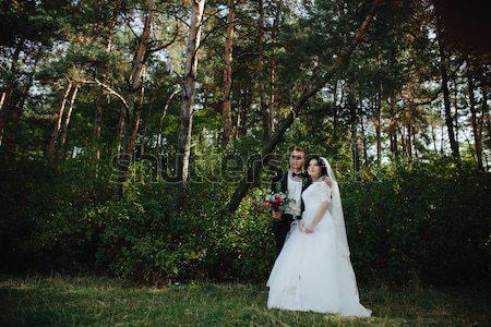 красивой свадьба пару позируют лес женщину Сток-фото © tekso