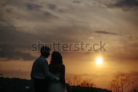 силуэта свадьба пару области невеста жених Сток-фото © tekso