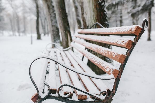 Banco neve gelo imagem decorativo Foto stock © tekso