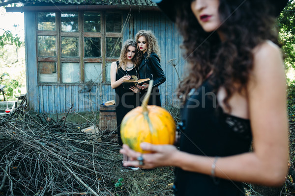 three vintage women as witches Stock photo © tekso