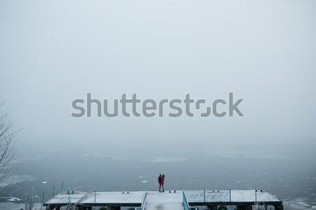 Güzel ayakta iskele dondurulmuş Stok fotoğraf © tekso