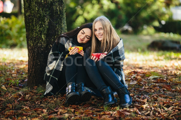 two beautiful in the park, posing for the camera Stock photo © tekso