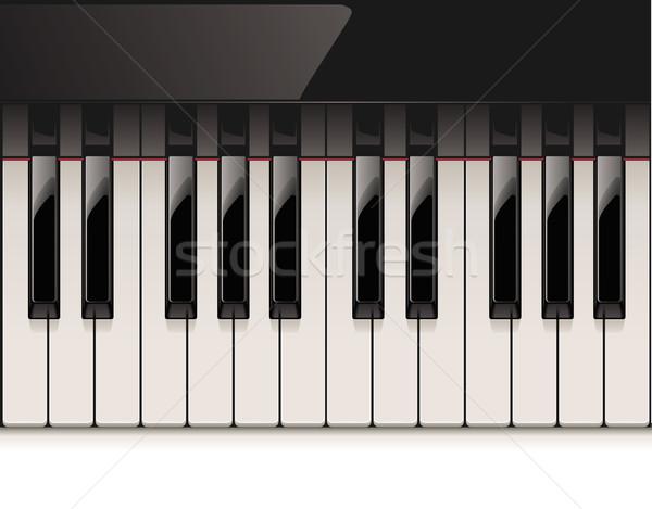Vektor részletes zongora billentyűzet fényes elefántcsont Stock fotó © tele52