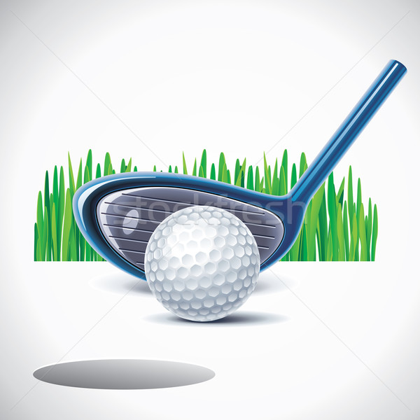 Vector golf club bal illustratie gat Stockfoto © tele52