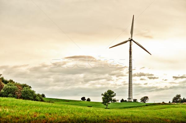 Windkraftanlage spät Nachmittag Frühling Wiese Himmel Stock foto © tepic