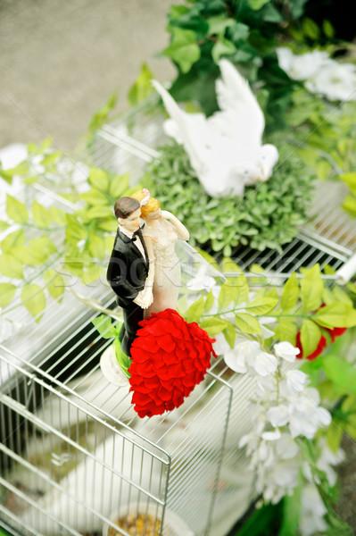 Duif kooi bruiloft decoratie paar Stockfoto © tepic