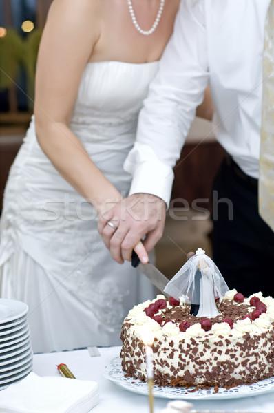 Bruidstaart bruid bruidegom samen handen Stockfoto © tepic