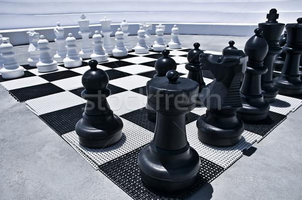 屋外 演奏 チェス ビッグ 黒白 グループ ストックフォト © tepic