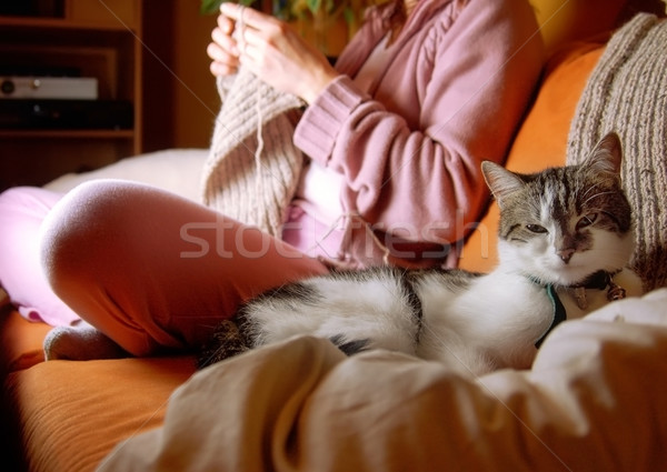 Idylic Scene in Living Room Stock photo © tepic