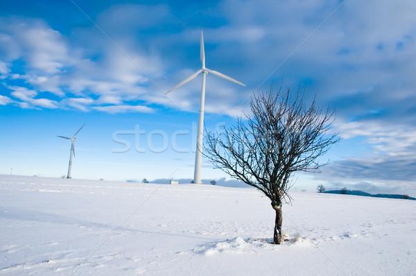 Stockfoto: Winter · landschap · twee · boom · hemel