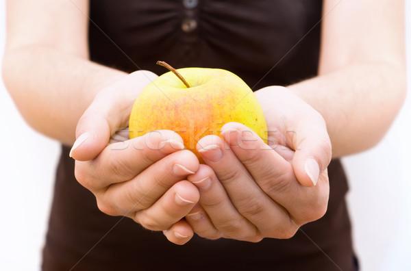 Appel hand vrouw natuur jonge Stockfoto © tepic