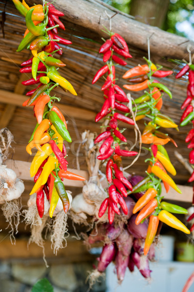 Paprika knoflook opknoping rond kleurrijk houten Stockfoto © tepic