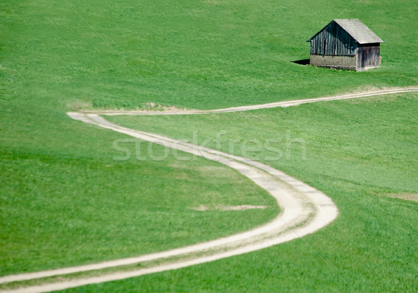 Crooked Road in the Meadow Stock photo © tepic