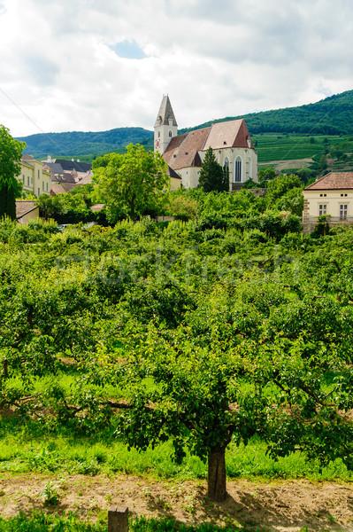 Church in Wachau Stock photo © tepic