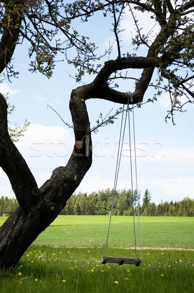 スイング ツリー 空っぽ 草 夏 チェーン ストックフォト © tepic
