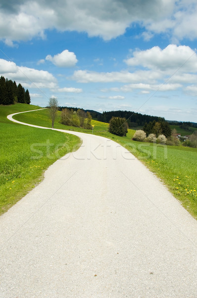 Crooked road in the country Stock photo © tepic