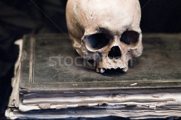 Skull on Book Stock photo © tepic