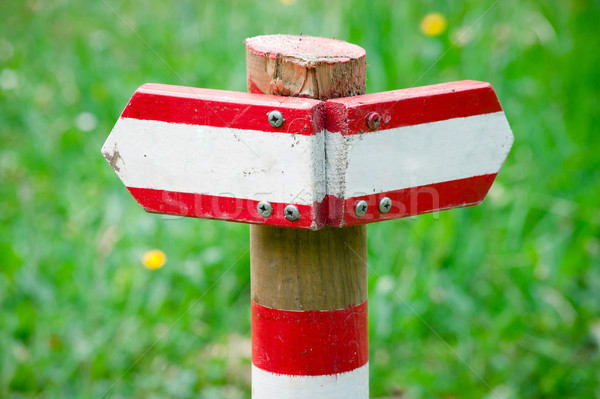 Directional Sign on Hiking Path Stock photo © tepic