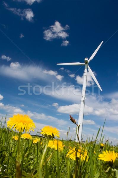 Чистая энергия ветровой турбины весны луговой полный Сток-фото © tepic