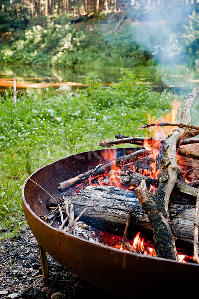 Campfire in the wilderness Stock photo © tepic