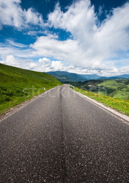 Country Road in the Alps Stock photo © tepic